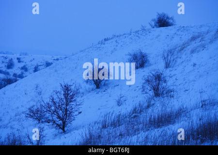 Winterlandschaft - Stockfoto