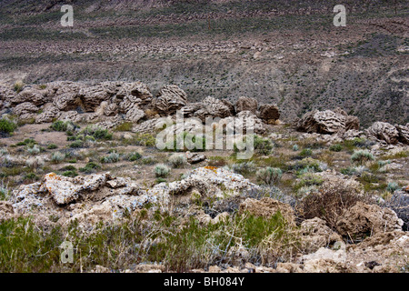 Kalktuff-Formationen in der Nähe von Pyramid Lake Nevada - Stockfoto