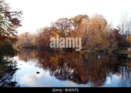 Chikaming Township Park im Herbst - Stockfoto