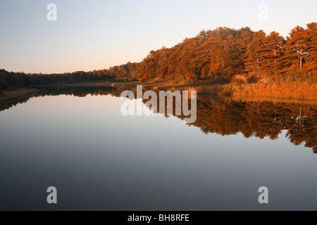 Big Sable River in Ludington State Park - Stockfoto