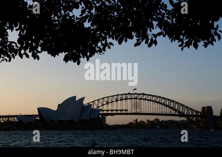 SYDNEY, Australien - Sydney, Australien - Sydney Opera House und der Sydney Harbour Bridge silhoutte mit Bäumen - Stockfoto