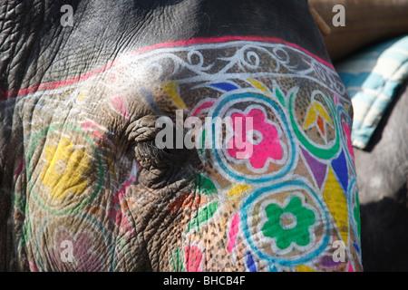 Nahaufnahme eines gemalten indischen Elefanten, Jaipur, Indien