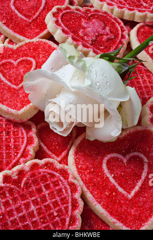 Weisse rose und herzförmige cookies - Stockfoto