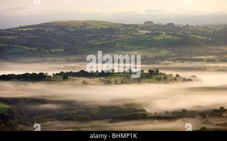 Am frühen Morgen Nebel schwebt über hügeligem Ackerland in der Nähe von Llangadog, Brecon Beacons National Park, - Stockfoto