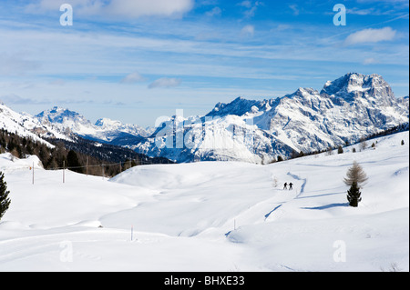 Langläufer auf den Pisten am Passo di Falzarego zwischen Andraz und Cortina d ' Ampezzo, Dolomiten, Italien - Stockfoto