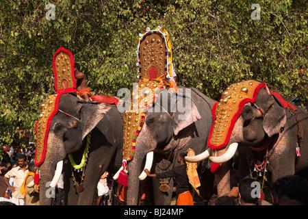 Indien, Kerala, Adoor, Sree Parthasarathy Tempel, Gajamela Festival, geschmückten Elefanten in rituelle Prozession - Stockfoto