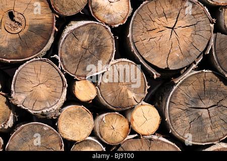 Haufen von Protokollen für Brennholz - Stockfoto