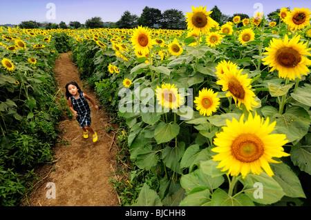 Ein junges Mädchen läuft durch ein Feld von Sonnenblumen - Stockfoto