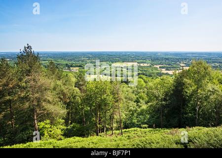 Britische Landschaft, Surrey Weald Blick Richtung South Downs von Sussex von oben von Leith Hill, Surrey, England, - Stockfoto