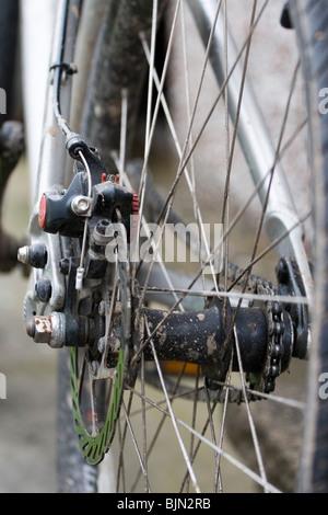 Eine hintere Scheibenbremse Montage auf dem Fahrrad - Stockfoto
