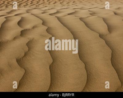 USA, Utah, Little Sahara, Sanddünen, full frame - Stockfoto