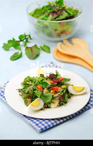 Gemischt Blätter Salat. Schritt für Schritt: PA 48 R0-PA 48 RA-PA 48 T1-PA 4876 - Stockfoto