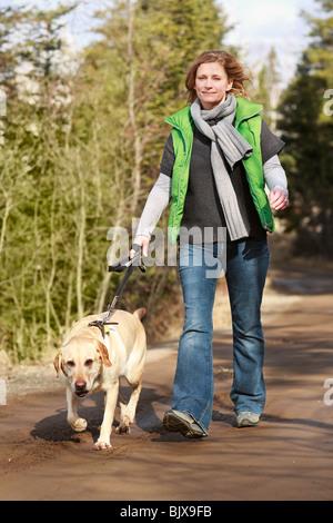 Frau zu Fuß ihre gelben Labrador Retriever auf der Landstraße.  Trout Lake, Ontario, Kanada. - Stockfoto