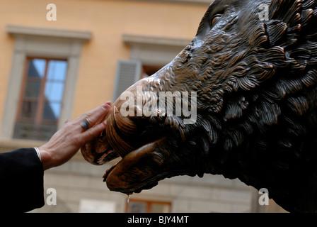 Reiben die Schnauze des Il Porcellino, die Bronze Wildschwein aus der römischen Marmorstatue kopiert, die in den - Stockfoto