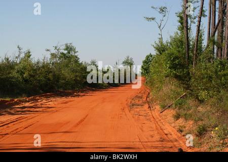 Straße, rote Böden der Florida Panhandle SE USA von Dembinsky Foto Assoc - Stockfoto