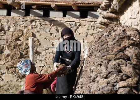 Ein Frauen Stapeln getrocknet Yak-Dung oder Kot zum Kochen verwenden Feuer in ihrem Bauernhaus in der tibetischen - Stockfoto