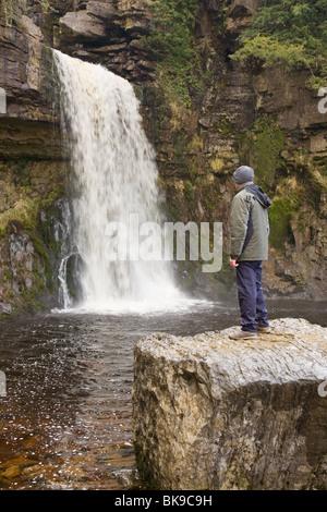 Ein Spaziergänger genießen Sie den Blick von Thornton Force Wasserfall, auf den Ingleton Wasserfällen Walk, Ribblesdale, - Stockfoto