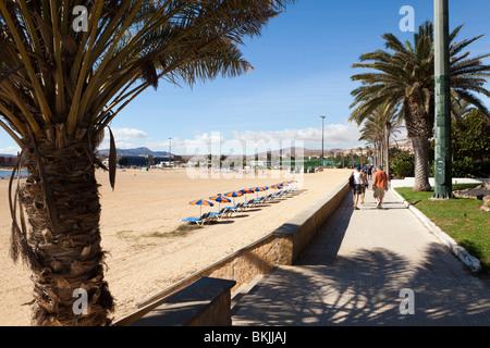 Der Strand vor dem Barceló Fuerteventura Hotel & Thalasso Spa, Caleta de Fuste, auf der Kanarischen Insel Fuerteventura - Stockfoto