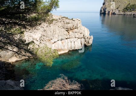 Deutsche Touristin auf Mallorca im Wald gebumst