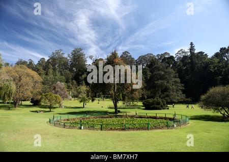 Der Botanische Garten in Ooty, kurz für Ootacamund, ein Hügel-Station-Kurort in Tamil Nadu, Indien. - Stockfoto