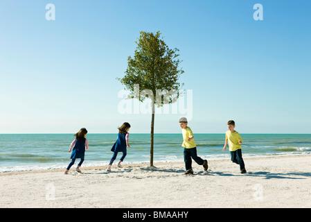 Spielende Kinder jagen um Baum wächst am Strand - Stockfoto