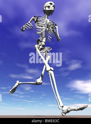 Laufen oder Joggen Skelett - Stockfoto