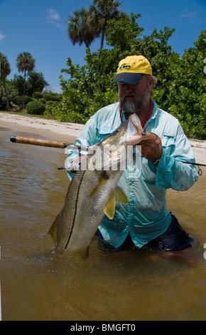 Inshore Angler hefts ein Riesen Snook gefangen in Florida Atlantic Intracoastal Waterway. Die Fische sind reichlich - Stockfoto