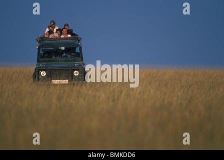 Afrika, Kenia, Masai Mara Wildreservat, Touristen-Uhr aus offenen Safari-LKW auf Pirschfahrt in der Savanne - Stockfoto