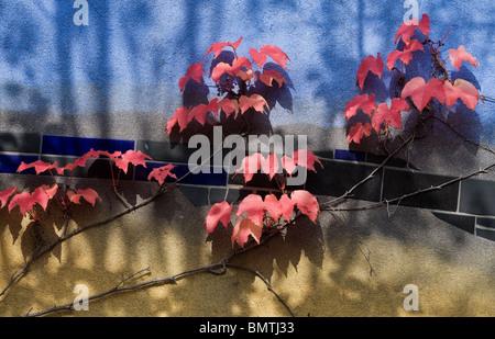 Hundertwasser Wohnanlage, Wien, Österreich - Stockfoto