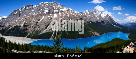 Peyto Lake und umliegenden Mooutains Panorama. Banff Nationalpark, Alberta, Kanada. - Stockfoto