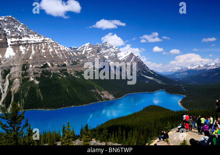 Peyto Lake anzieht Masse von Touristen. Banff Nationalpark, Alberta, Kanada. - Stockfoto