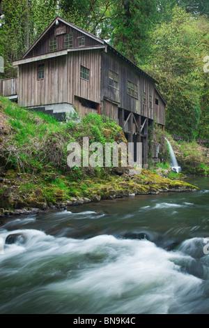 Clark County, WA: Cedar Creek Grist Mill (1876) umgeben von grünen Frühlingswald - Stockfoto