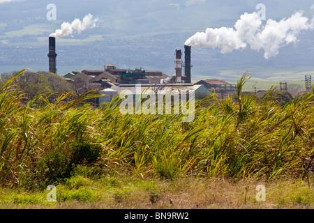 Zucker-Verarbeitungsanlage auf Maui in Hawaii - Stockfoto