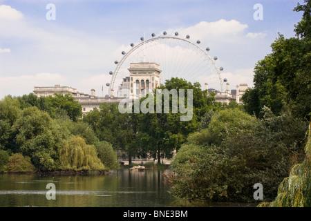 "Riesenrad ""London Eye"", gesehen in den St. James Park, London, England - Stockfoto"