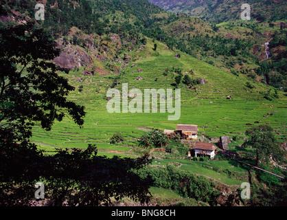 Dunkle Äste Frame Bauernhäuser und Terrassenfelder auf einem Hügel oberhalb des Flusses Tamur in der Kangchenjunga - Stockfoto