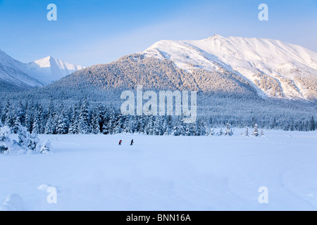 Paar Ski-Langlauf in einer verschneiten Wiese, umgeben von Fichten und die Chugach Mountains in der Nähe von Girdwood, - Stockfoto