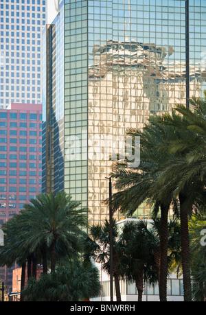 Hochhäuser und Palmen in New Orleans - Stockfoto