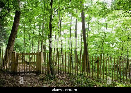 Wanderweg führt durch Wälder von blockiert geschlossen Tor - Stockfoto