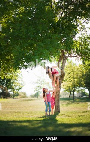 3 junge Mädchen spielen unter Baum - Stockfoto