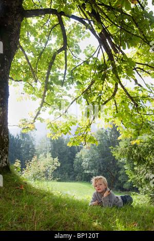 Junge liegend unter einem Baum - Stockfoto