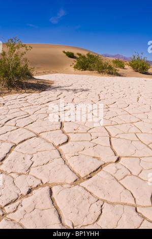 Geknackt Playa in Mesquite flache Sanddünen, Death Valley National Park. California - Stockfoto