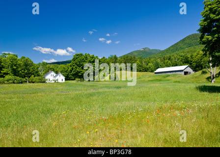 Ländlichen Landschaft mit grünen Wiese, New Hampshire, USA. - Stockfoto