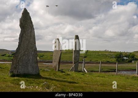 """Cnoc Ceann ein """"Ghàrraidh No 2 Steinkreis in der Nähe von Calanais, Isle of Lewis äußeren Hebriden, Schottland. - Stockfoto"""