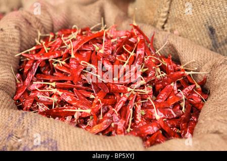 Meschotschek voll von getrockneten heißen roten Chilischoten in meschotschek in Connemara Markt, Trivandrum, Kerala, - Stockfoto