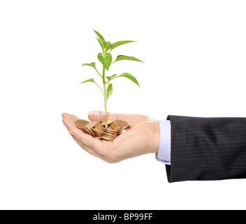 Hand, die eine Pflanze wächst aus Haufen von Münzen - Stockfoto