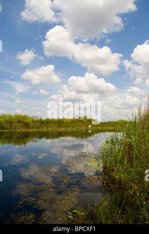 Die Everglades im südlichen Bundesstaat Florida in den USA - Stockfoto