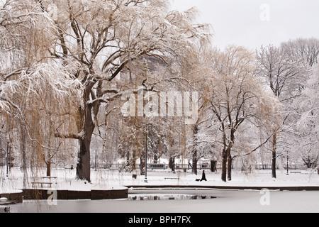 Schneebedeckte Bäume in einem öffentlichen Park Boston Public Garden, Boston, Massachusetts, USA - Stockfoto
