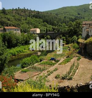 Fluss Jaur und klein halten am Ufer des Flusses Gemüseanbau Olargues ein mittelalterliches Dorf in der hohen Languedoc - Stockfoto