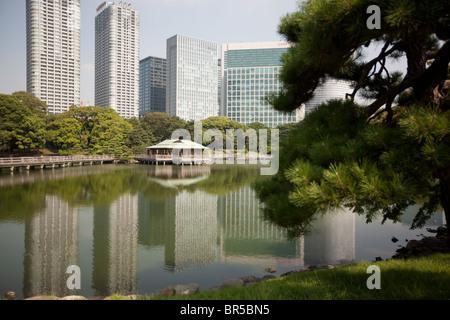 Blick auf Hochhäuser im Stadtteil Shiodome wie in Hama-Rikyu Teien Gärten, in Tokio, Japan, Montag, 23. August - Stockfoto