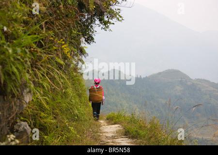 Zhuang Mädchen Korb in den Berg im Nebel, Longsheng, Guangxi, China - Stockfoto